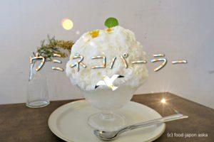 「ウミネコパーラー」こんもりふわふわ系かき氷が有名なカフェが能登穴水から金沢に移転。素材を活かしたナチュラルなおいしさがいいね!癒しの空間で